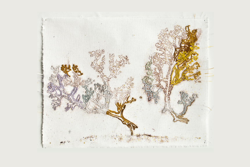 ‹Embroidery›, 2011, 30x40cm, embroidery, stitch, cotton thread (moulnegarn), cotton canvas, drawing.